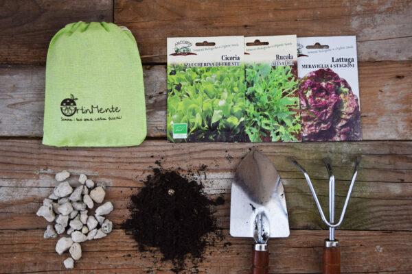 coltivare insalata sul terrazzo_ortinmente
