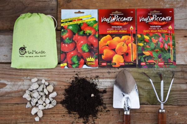 coltivare peperoncini in vaso_otinmente