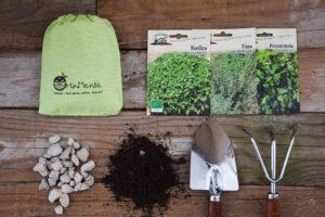 coltivare piante aromatiche